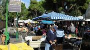 mercato-strada-parco