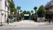 Arena 4 Palme