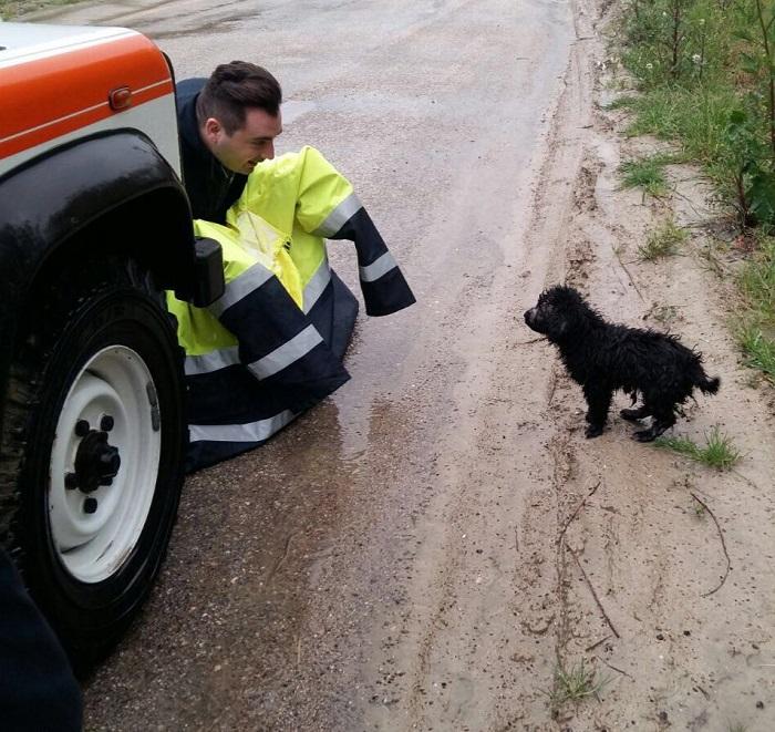 Protezione Civile salva cucciolo in una busta lungo Saline