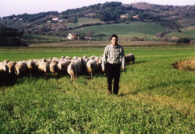 Abruzzo: l'affidamento dei pascoli regionali