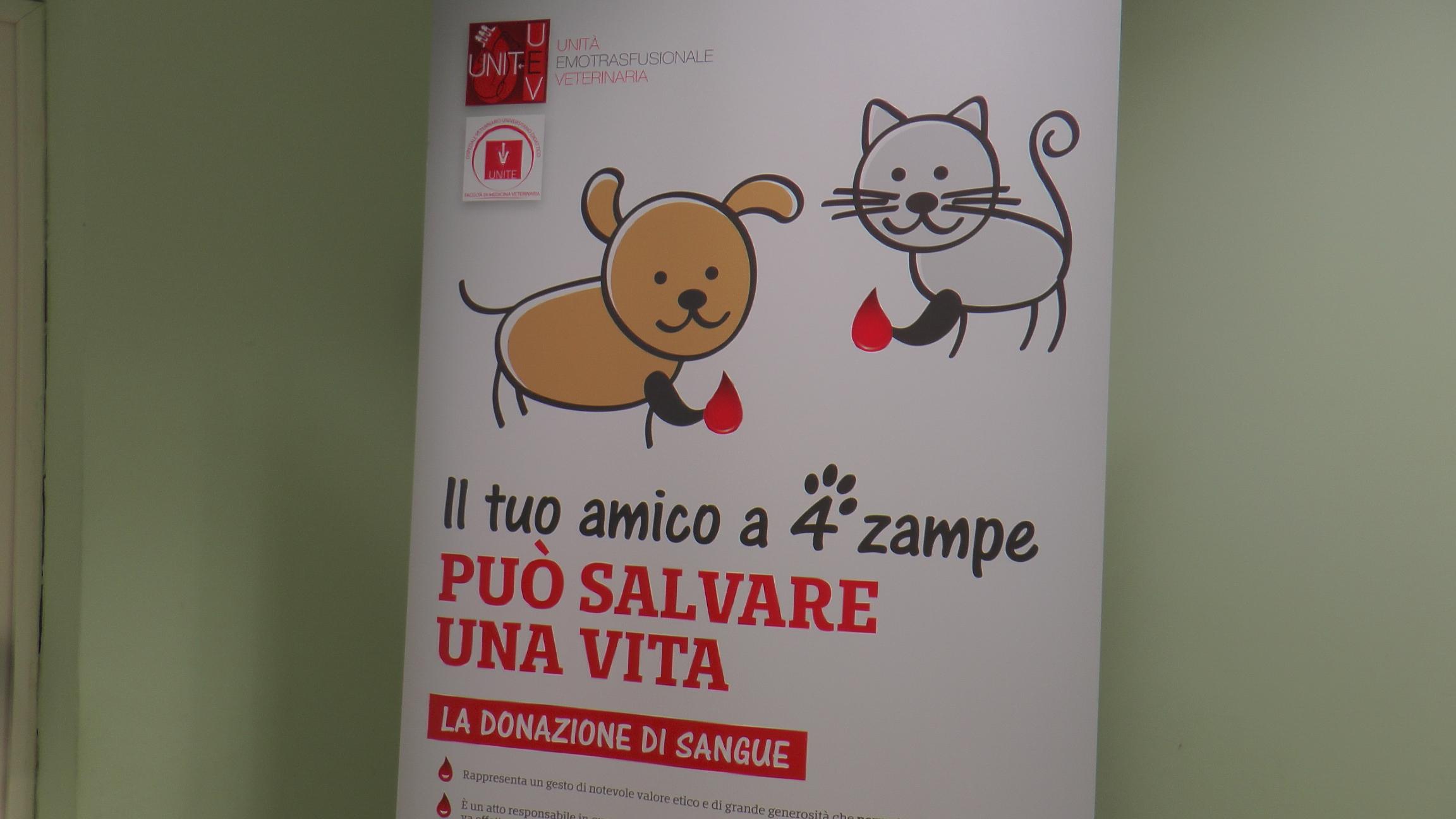 Teramo: inaugurata all'Unite la banca del sangue per animali