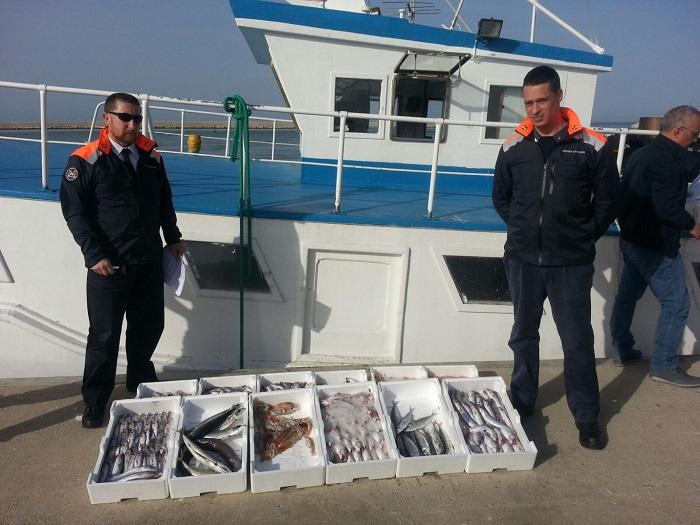 Controlli Capitaneria Fossa Pomo, pesce sequestrato