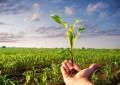 Oggi è la Giornata della Terra: Legambiente e la tutela in Abruzzo