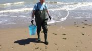 montesilvano-mare-arta