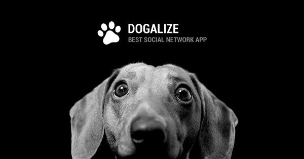 Vacanze Dogalize, solidarietà canina anche in Abruzzo