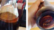 funghi-Coca-Cola