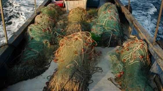 Vasto, reti da pesca sequestrate: troppo vicine alla costa