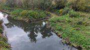 fiume-saline