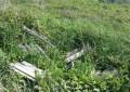 Pescara, area verde abbandonata in via Alpi
