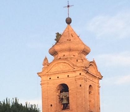 Spunta un cespuglio sulla cupola della Madonna dei 7 Dolori