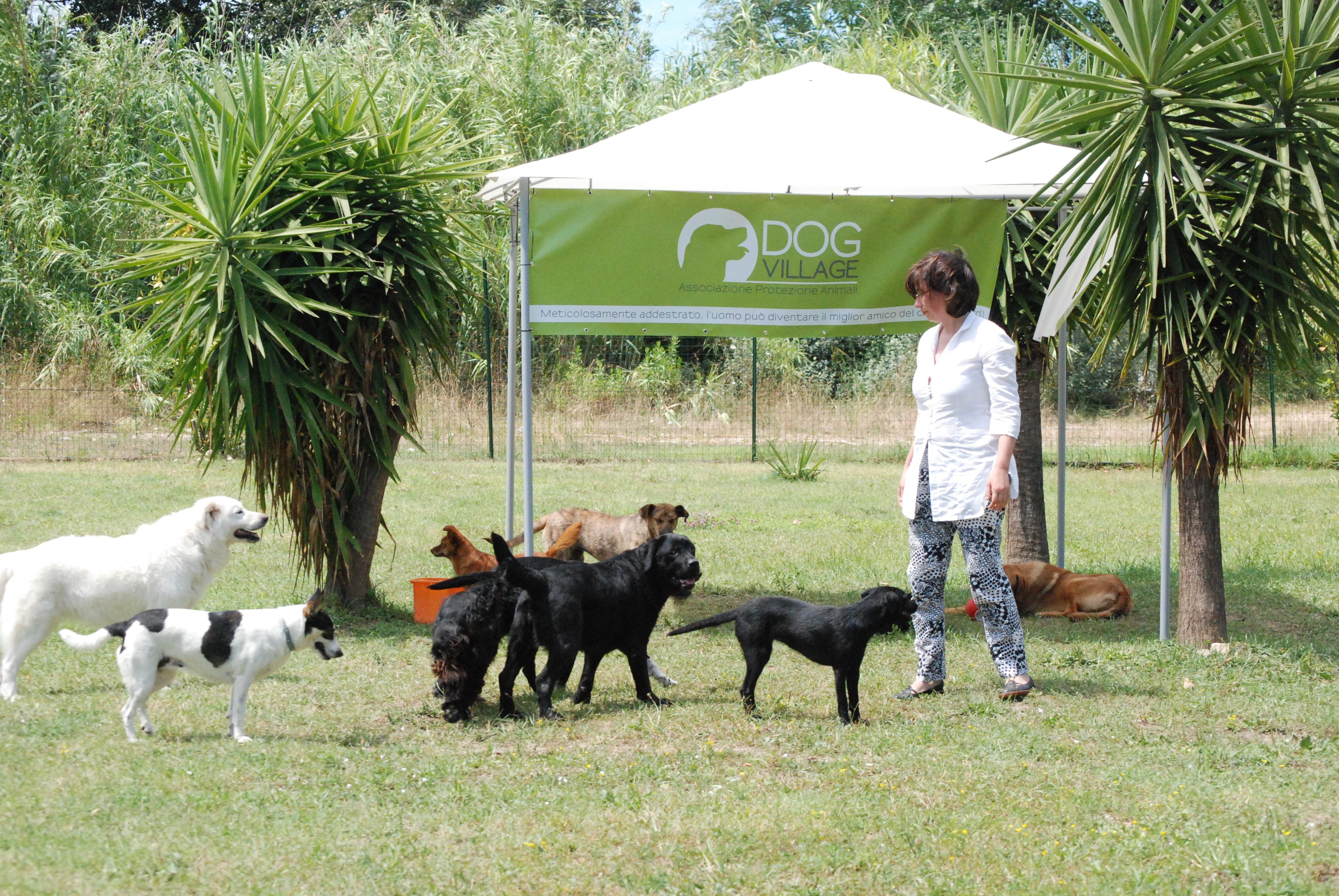Montesilvano: convenzione tra Comune e Dog village