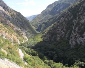 Ambiente: torna la giornata delle oasi del Wwf