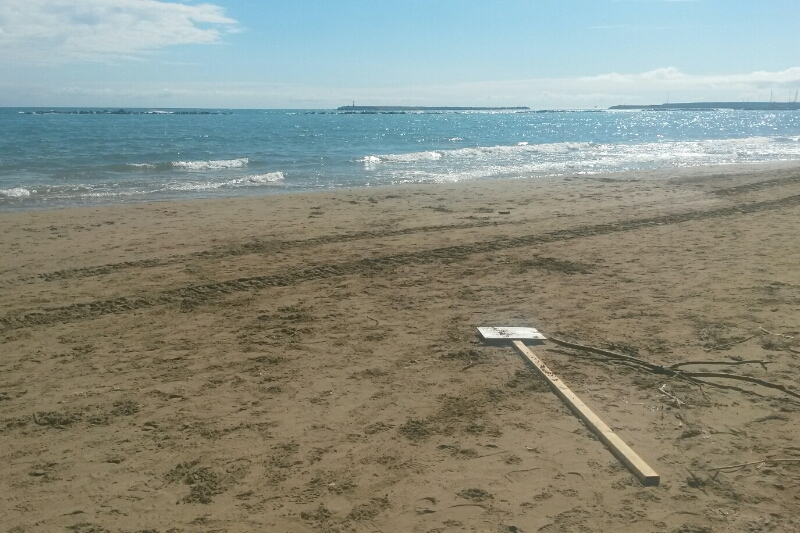 Pescara: divelti i divieti di balneazione