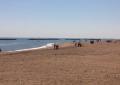 Foro di Ortona, spiaggia ripulita dai volontari per beneficenza