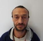 Guiscardo Domenico