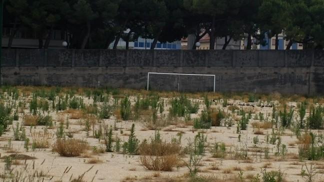 """Pescara: """"campo Rampigna in abbandono"""", denuncia Pignoli"""