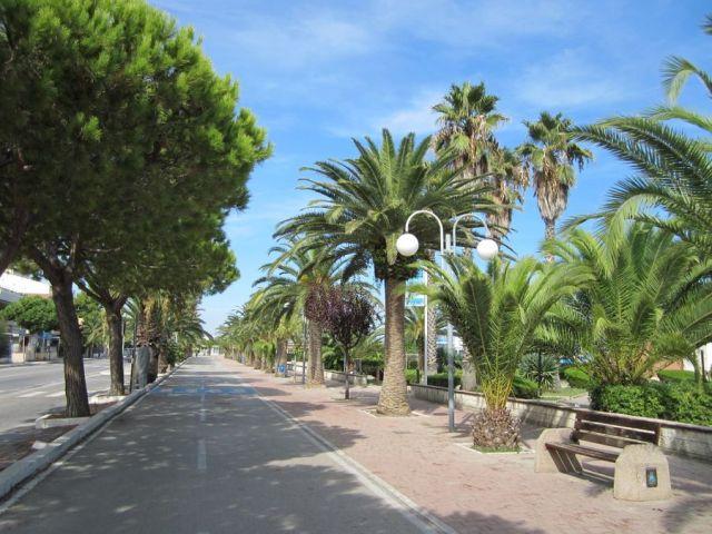 Tortoreto: turista 92enne investito sul lungomare