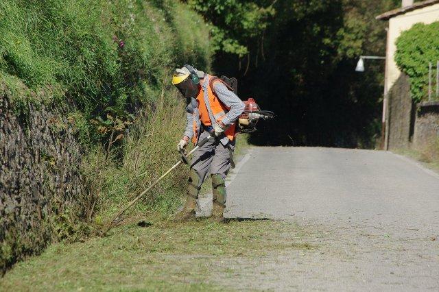 Provincia Pescara: via allo sfalcio dell'erba