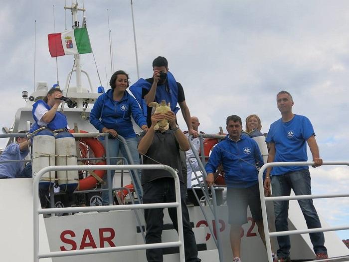 Pescara: le tartarughe riabbracciano il mare