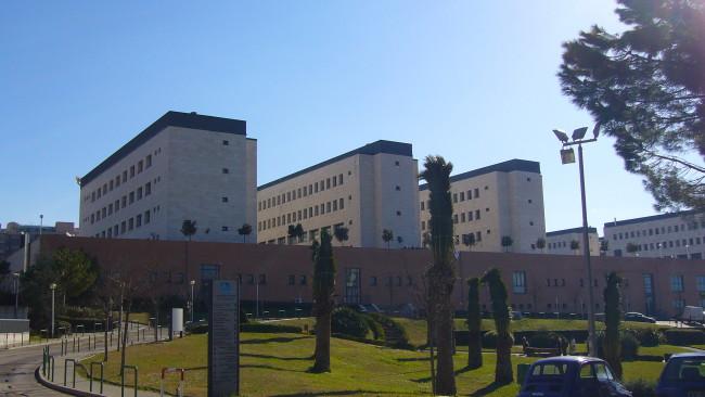 """Il Censis """"boccia"""" l'Università d'Annunzio"""