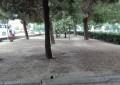 Forza Nuova sulle aree verdi occupate a Pescara