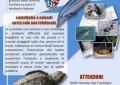Biodiversità marina: a Pescara la chiusura di Adriatic+