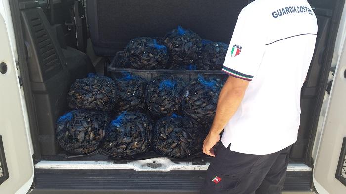 Pescara: Capitaneria, maxi sequestro di mitili