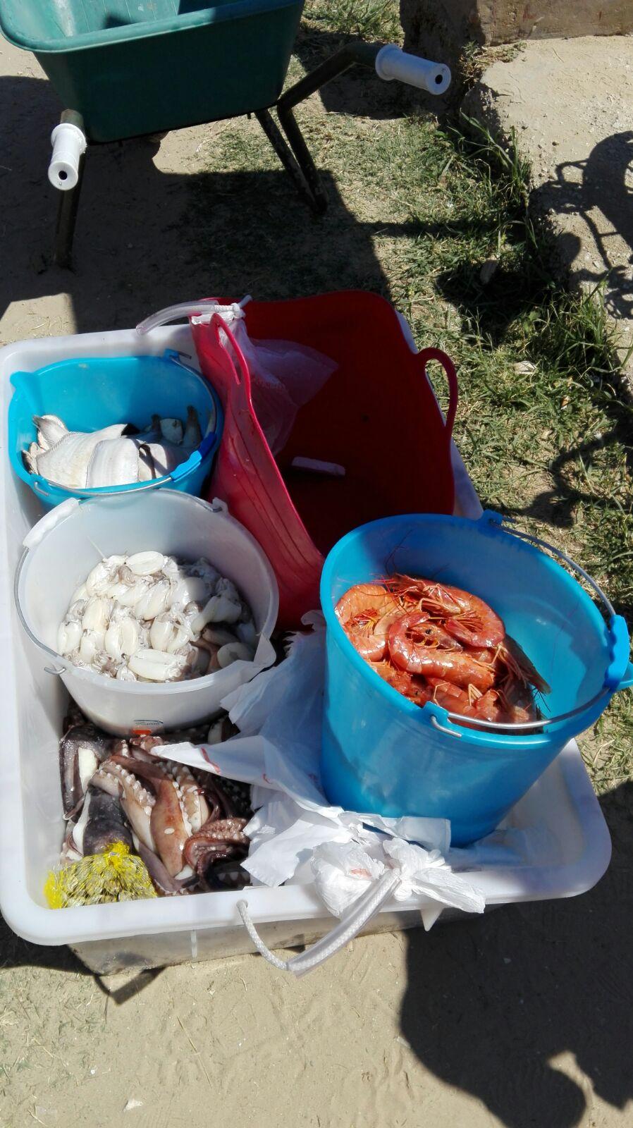 San Salvo: sequestrati gonfiabili e pesce in spiaggia
