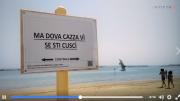 video-delfini-divieti1
