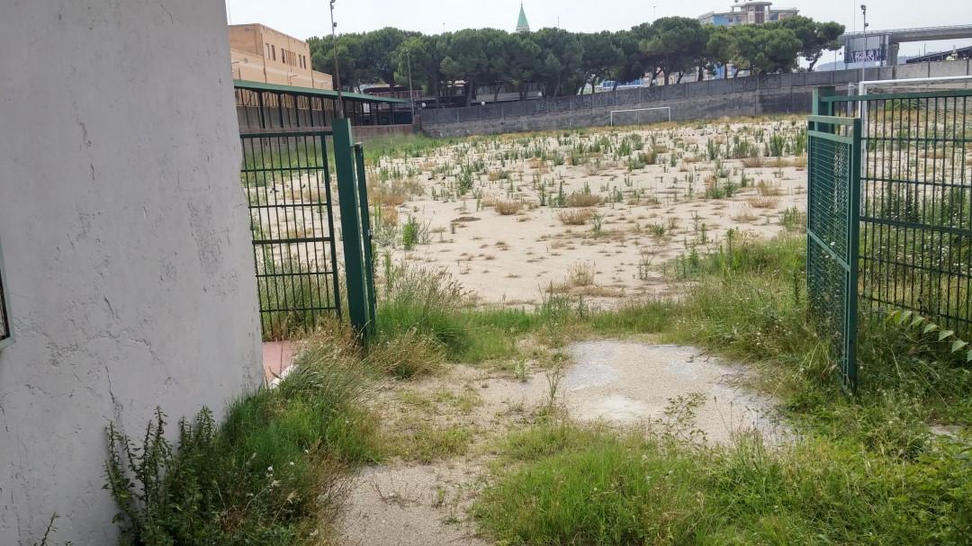 Pescara: lo stadio Rampigna rinasce?
