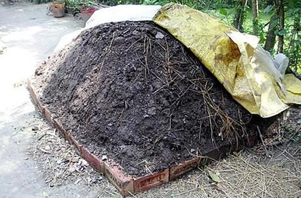 Compost con plastica, sequestri a Massa d'Albe