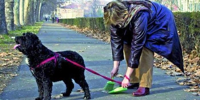 Pescara: Comune, giro di vite su deiezioni canine