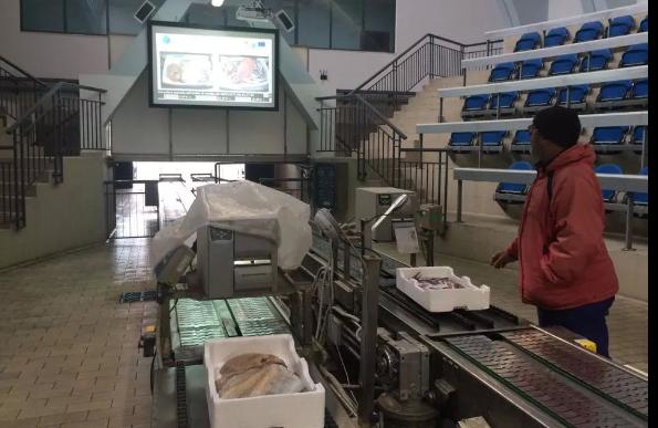 Pescara, al via i lavori al mercato ittico