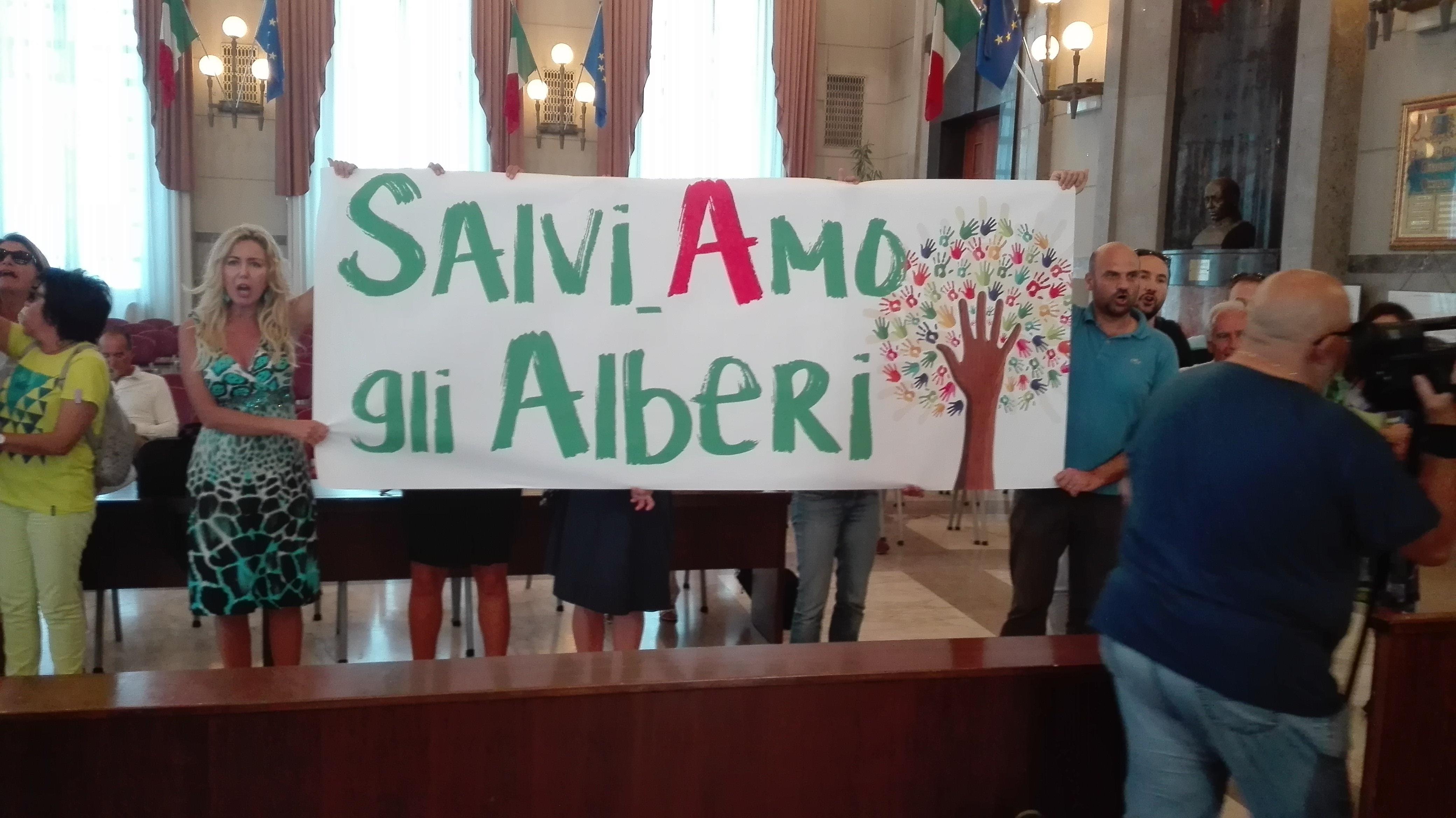 Taglio alberi: proteste in Consiglio Comunale