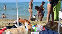 unica-beach1