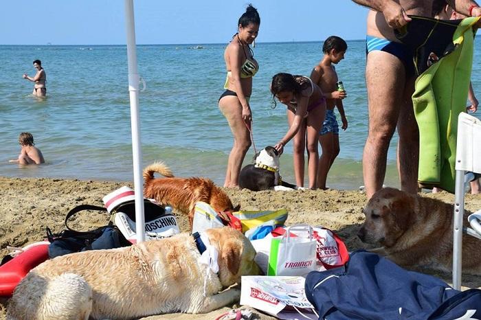 Silvi: Ferragosto, boom su spiaggia per animali