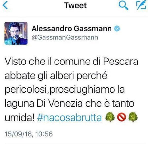 Gassmann-albero-pe