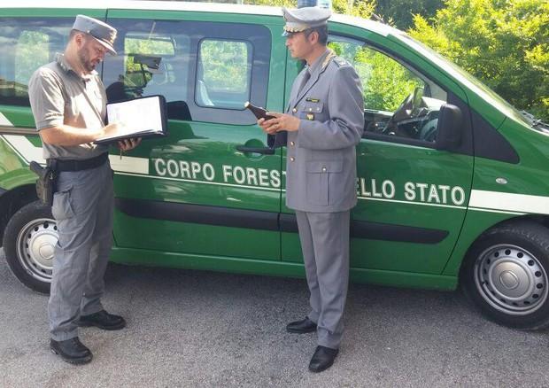 Atti Ato su Aca, la Forestale sequestra i documenti