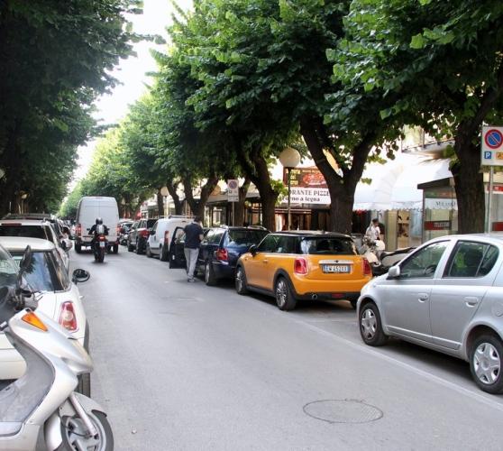 Pescara: verde pubblico, i suggerimenti degli agronomi