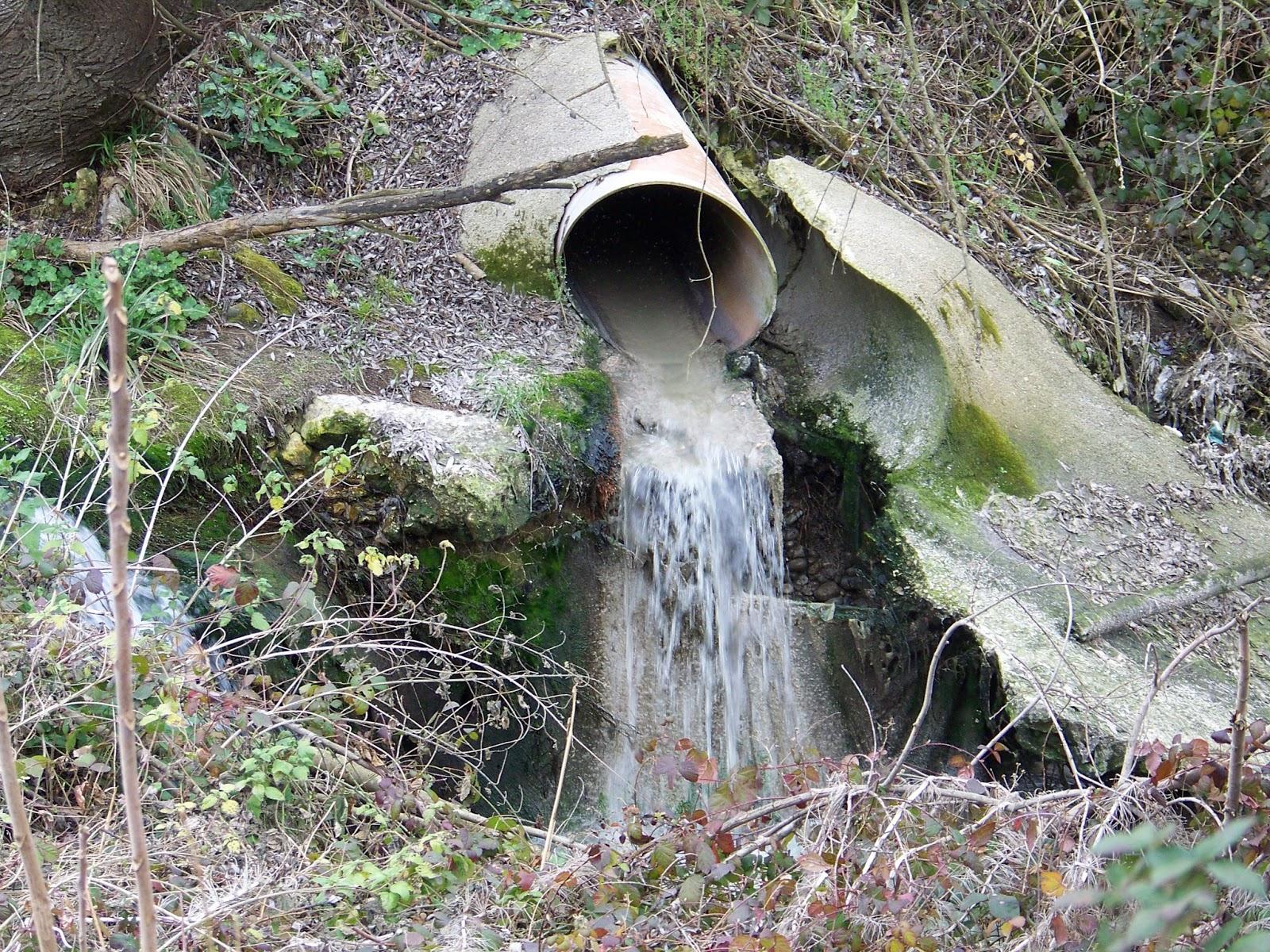 Lanciano liquami nel torrente arno for Cabine nere del torrente