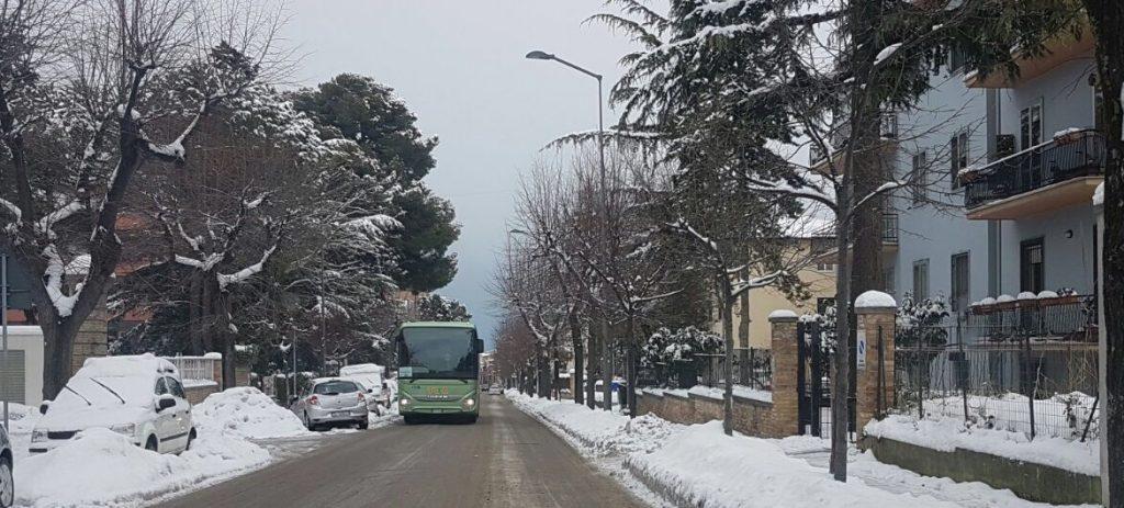 autobus-neve