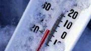 freddo1