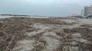 spiaggia-detriti1