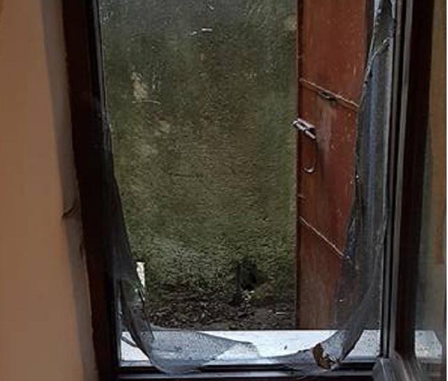 Paura nell'Aquilano: orso entra in una casa, famiglia barricata con due bimbi