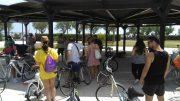 bici-marchio-montesilvano1