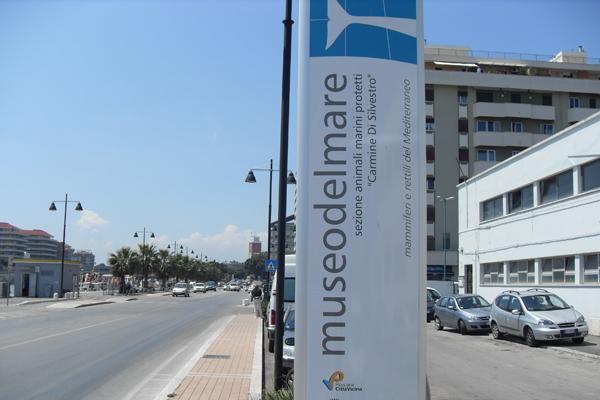 Masterplan Pescara, si alla Città della Musica e al Museo del Mare