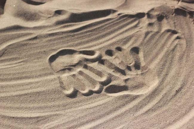 Paesaggio: in Abruzzo consumato il 30% di suolo costiero