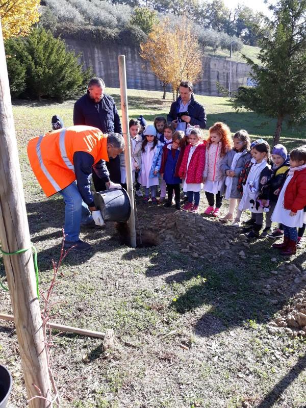 Atessa e Chieti: i bambini piantano alberi