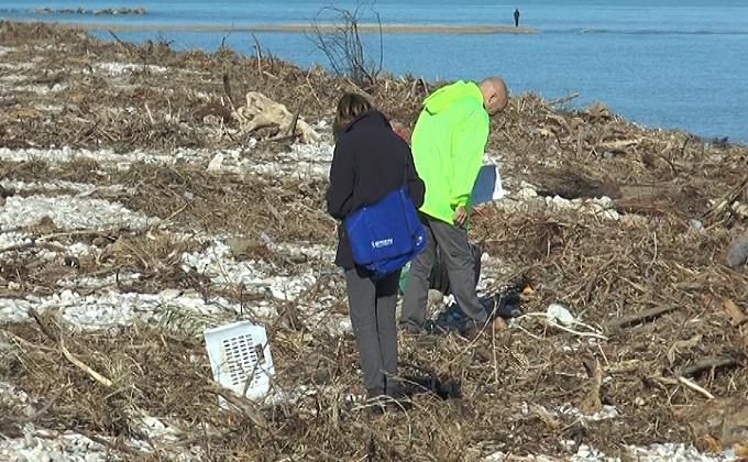Pineto, emergenza rifiuti spiaggiati