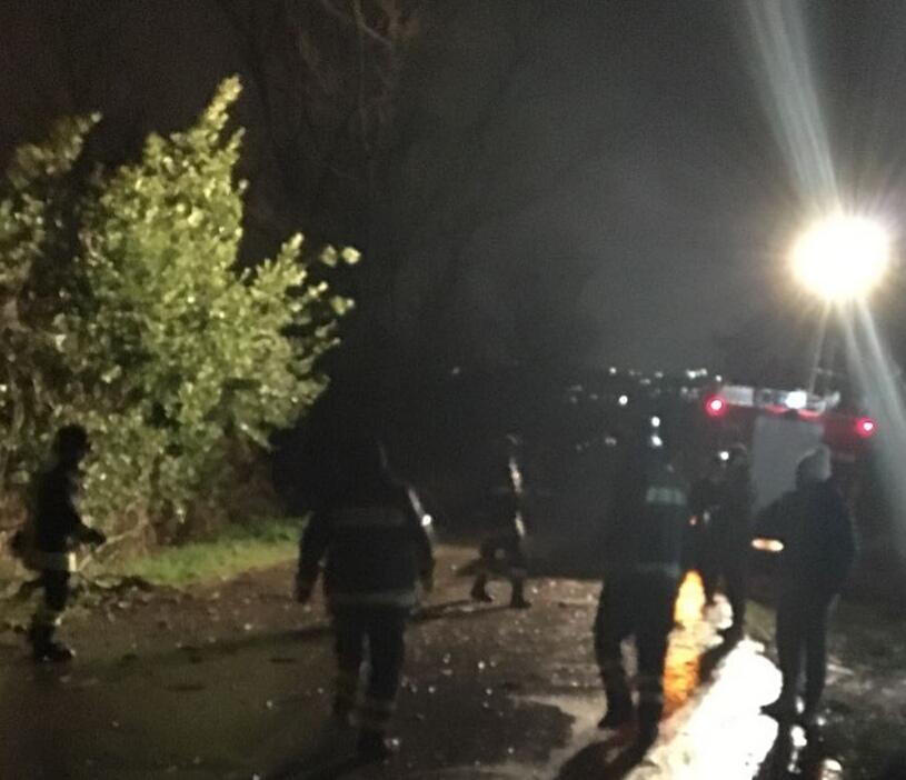 Città Sant'Angelo, grosso ramo caduto su auto